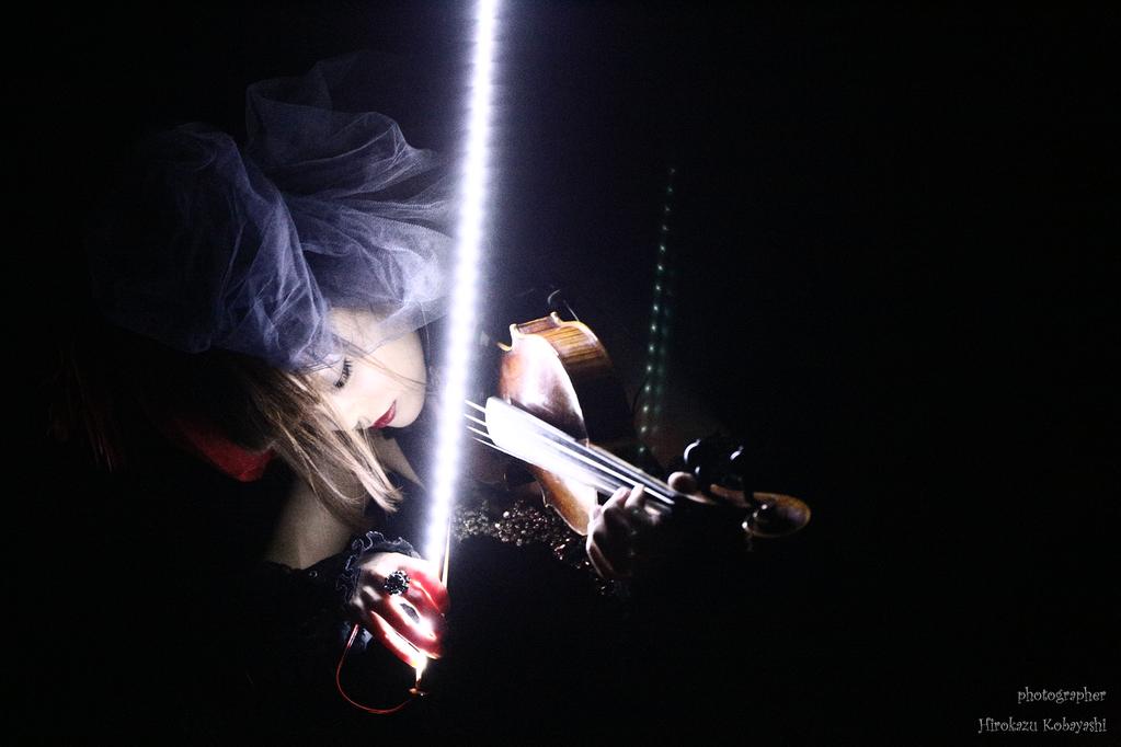 光る弓 Violin Bow の魅力